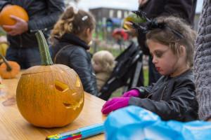 Halloween in het Cascadepark - 2016-10-21 - 02